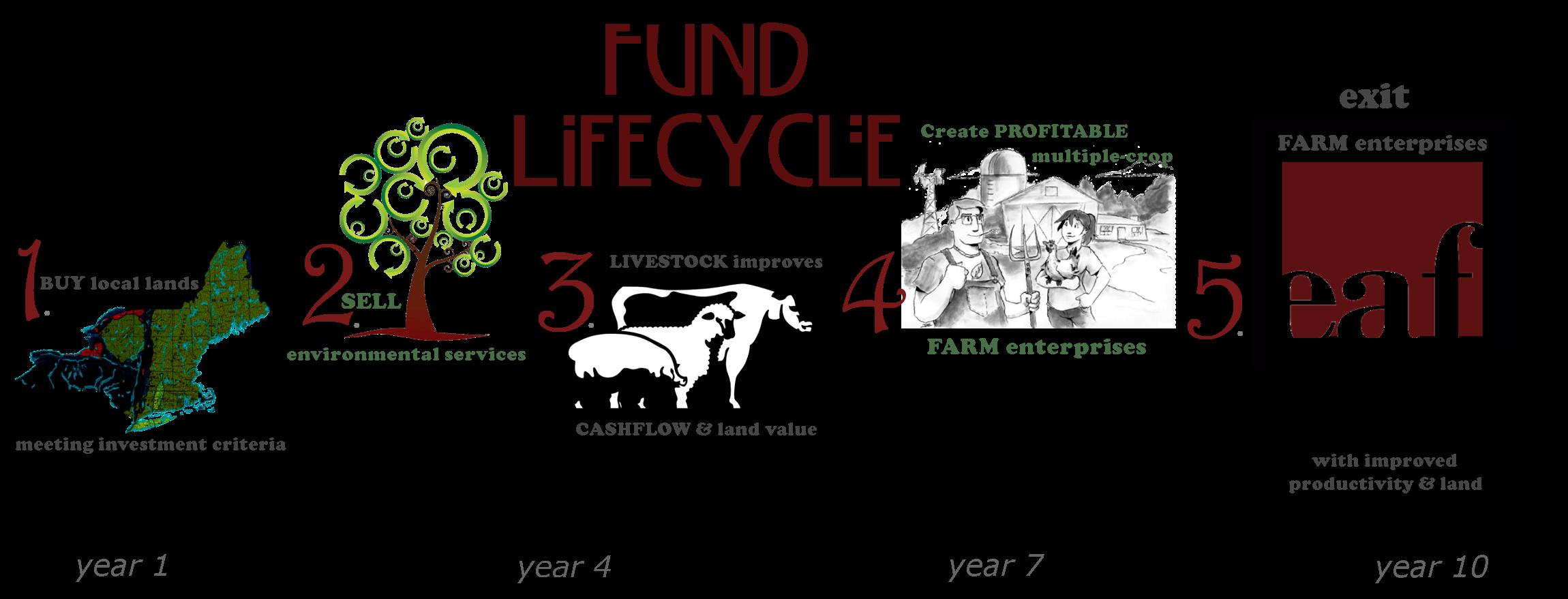 EAF.flowchart.timeline.trans.12.2013.3