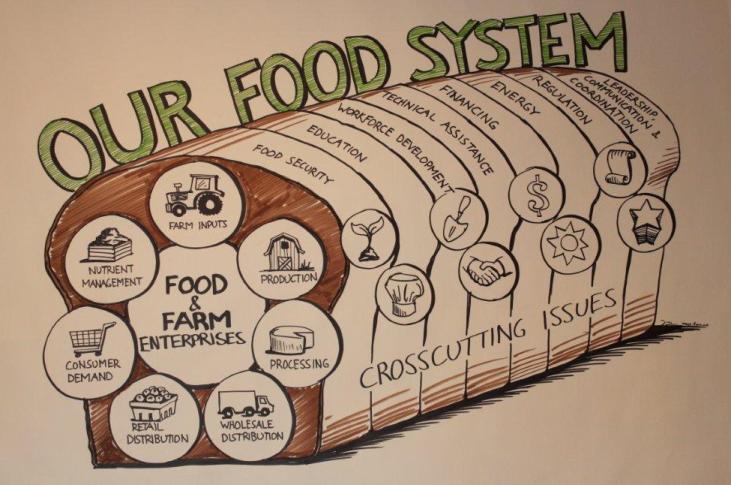 Playbook.foodsystem
