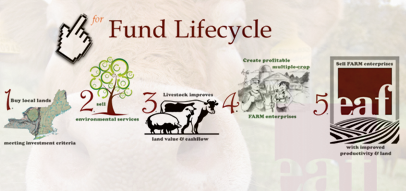 EAF Lifecycle